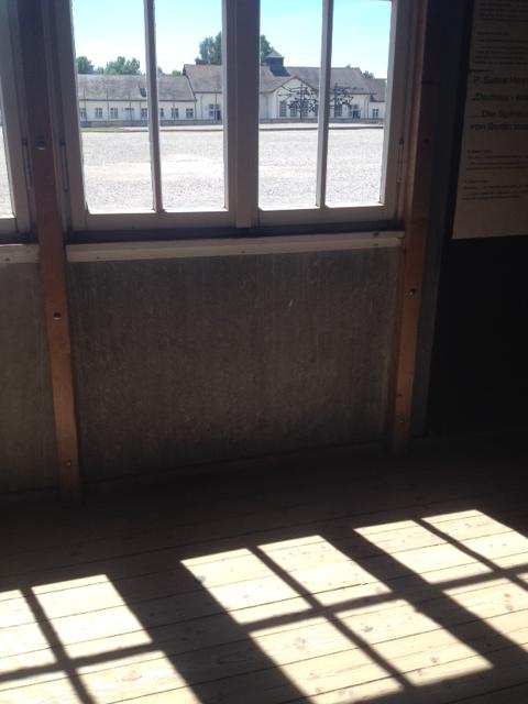 view through window