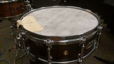 "Pictured Pearl Philharmonic Solid Maple 5"" Snare Drum"
