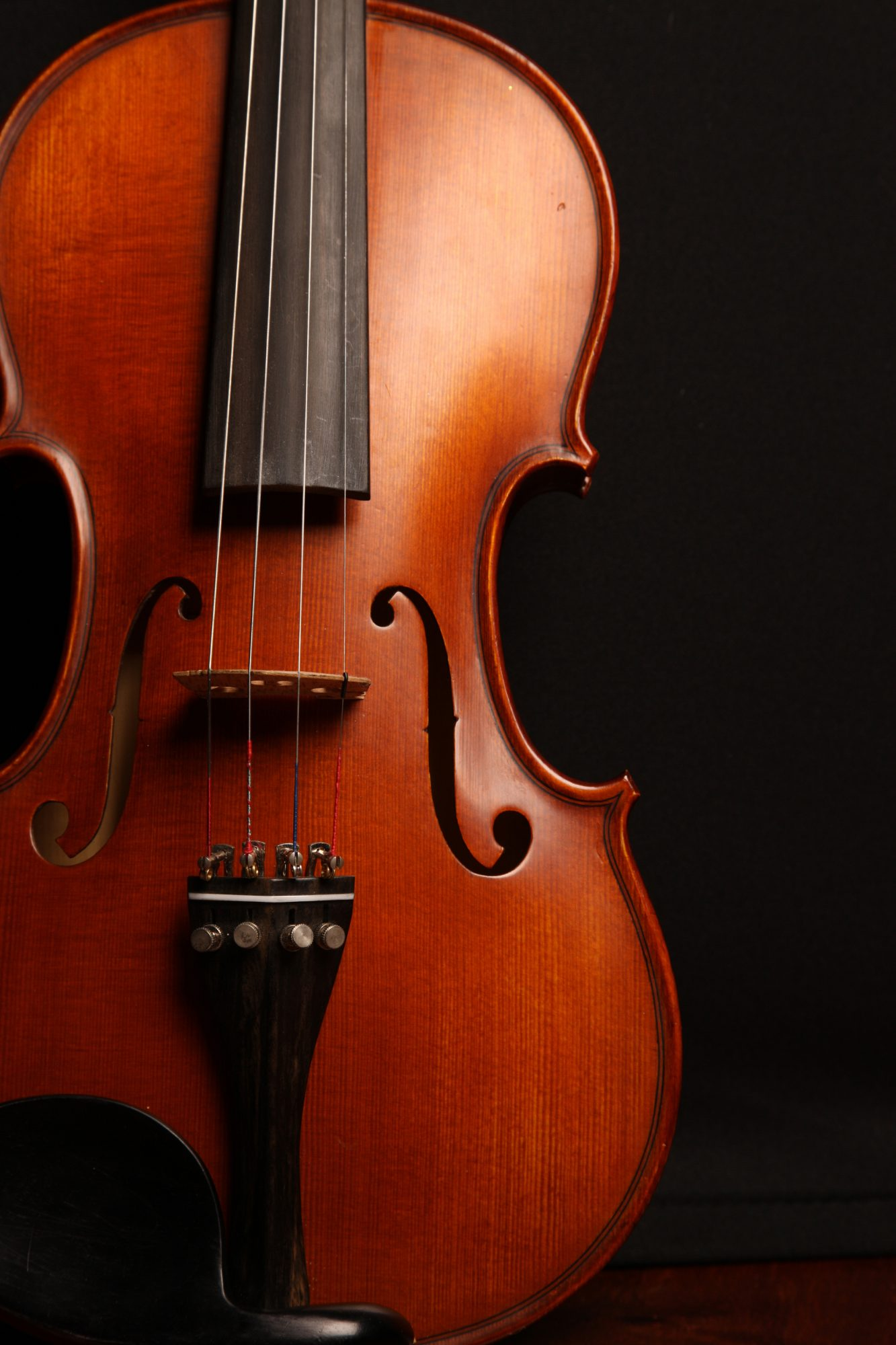 Instrument Photo of Violin